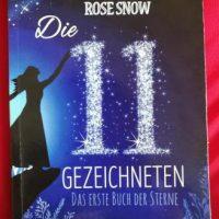 """Foto vom Cover des Buches """"Die 11 Gezeichneten"""" Teil 1 von Rose Snow"""